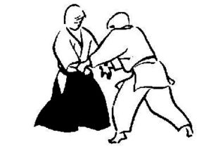teamcoaching en vechtkunst